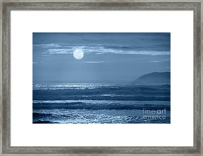 Early  Morning Splendor Framed Print by Sandra Bronstein