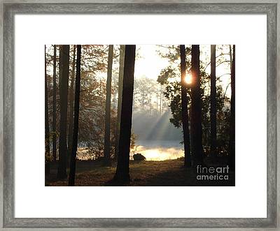 Early Morning Sun Rays On The Lake Framed Print by Cindy Hudson