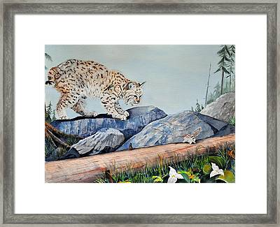 Early Morning Surprise Framed Print