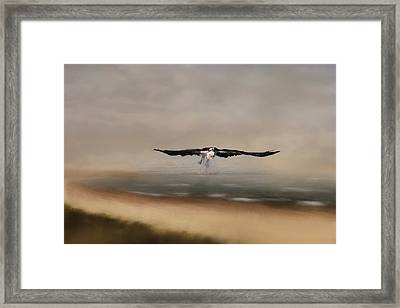Framed Print featuring the photograph Early Morning Takeoff by Kim Hojnacki