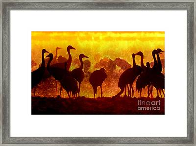 Early Risers  Framed Print