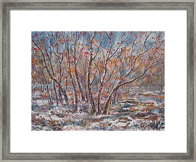 Early Snow. Framed Print