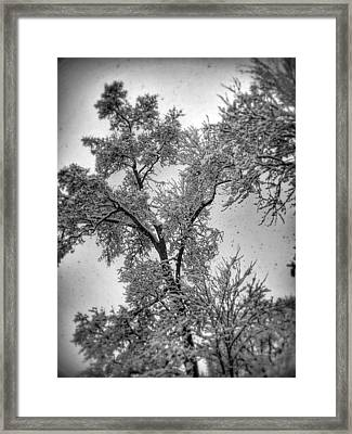 Framed Print featuring the photograph Early Snow by Steven Huszar