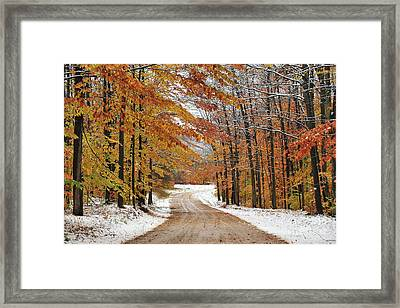 Early Snowfall In Manistee National Forest Framed Print by Terri Gostola