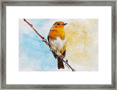 Early Spring Framed Print by Greg Collins