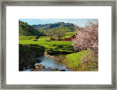 Early Spring In The Valley Framed Print by Kathleen Bishop