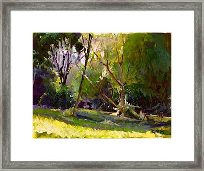 Early Summer Morning  Framed Print by Stuart Roddy