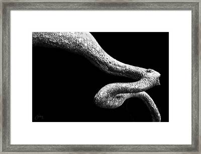 Framed Print featuring the photograph Earth Capillary by Joseph Westrupp