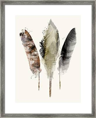 Earth Feathers Framed Print
