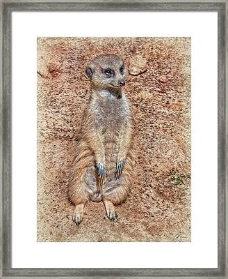 Framed Print featuring the photograph Earth Manikin by Hanny Heim