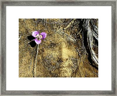 Framed Print featuring the photograph Earth Memories - Desert Flower # 2 by Ed Hall