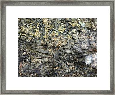 Framed Print featuring the photograph Earth Memories - Stone # 6 by Ed Hall
