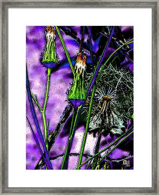 Earth Nail Framed Print by Michele Caporaso