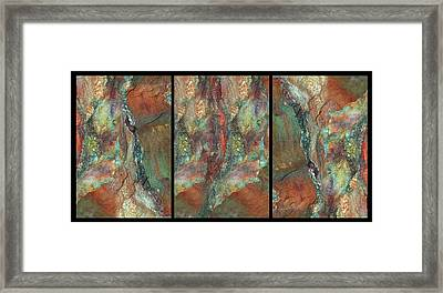 Earth Of India. Triptych Framed Print by Marina Shkolnik