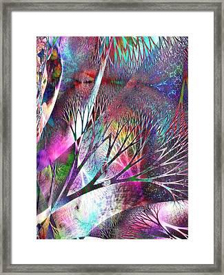 Earth Song 7 Framed Print by Helene Kippert