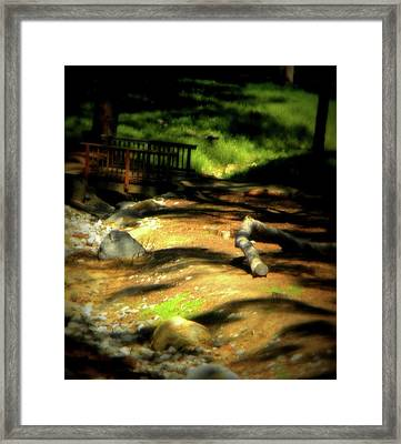 Earth Walk Framed Print