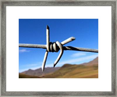 Earthly Boundaries Framed Print by Vijay Sharon Govender