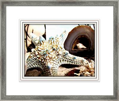 Earth's Jewels Framed Print
