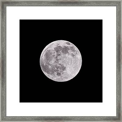 Earth's Moon Framed Print by Steve Gadomski