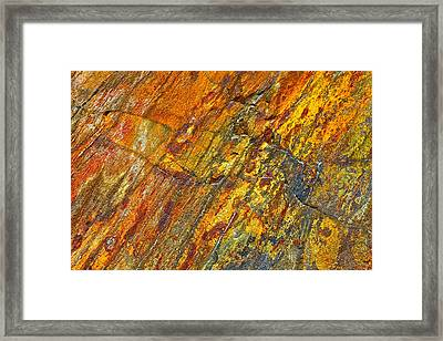 Earths Palette Framed Print by Karon Melillo DeVega