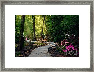 Earyl Morning Walk Through Honor Heights Park Framed Print by Tamyra Ayles