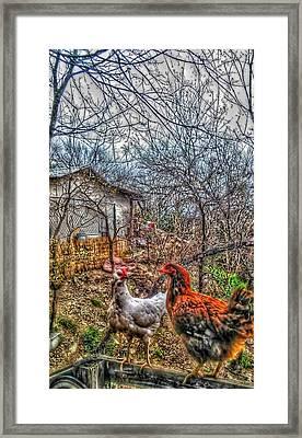 East Austin Livin Framed Print