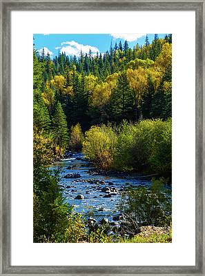 East Fork Autumn Framed Print