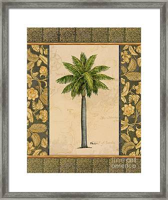 East Indies Palm II Framed Print by Paul Brent