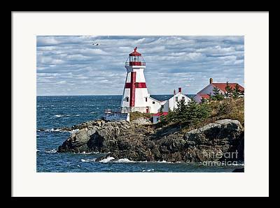 Campobello Island Framed Prints
