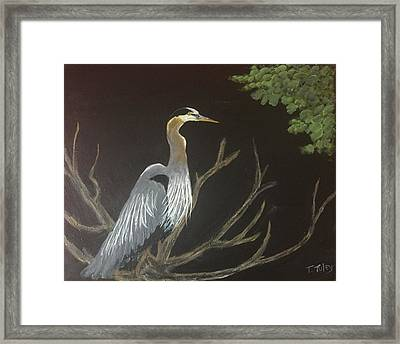 East Tennessee Blue Herron Framed Print by Terry Tuley