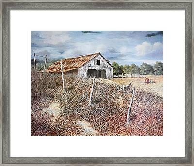 East Texas Barn Framed Print by Bob Hallmark