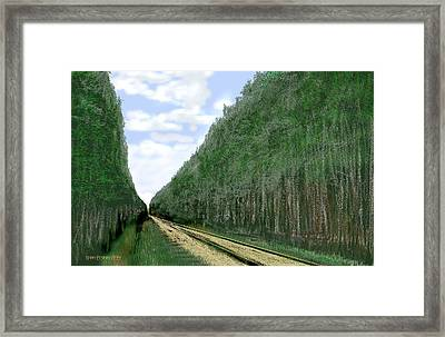 Framed Print featuring the digital art East Texas Pine Cut by Kerry Beverly