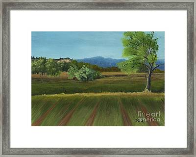 East View Framed Print