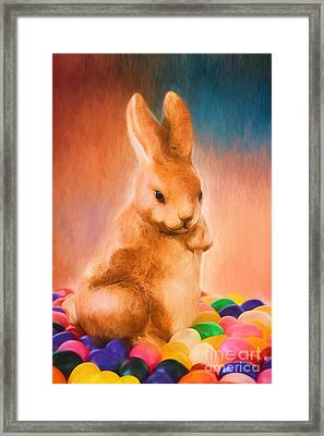 Easter Bunny Framed Print by Darren Fisher