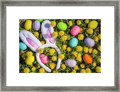 Framed Print featuring the photograph Easter Bunny Ears by Teri Virbickis