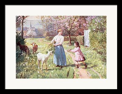Country Lanes Framed Prints