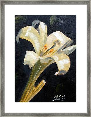 Easter Lilly Framed Print by Maria Soto Robbins