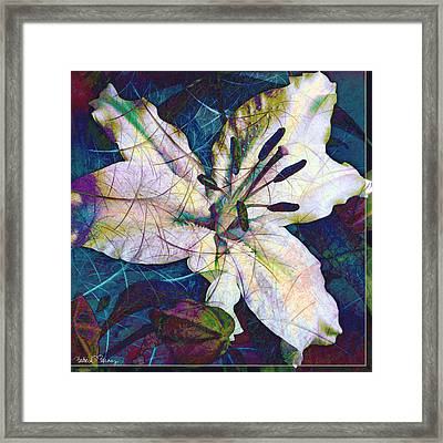 Easter Lily Framed Print by Barbara Berney
