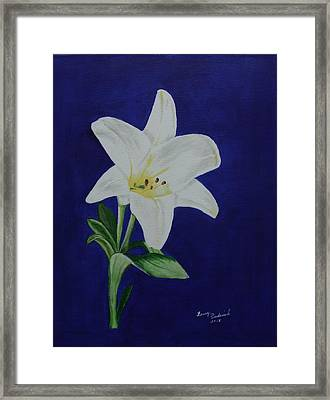 Easter Lily Framed Print