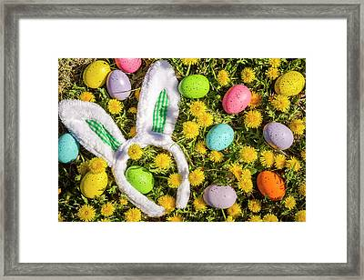 Framed Print featuring the photograph Easter Morning by Teri Virbickis