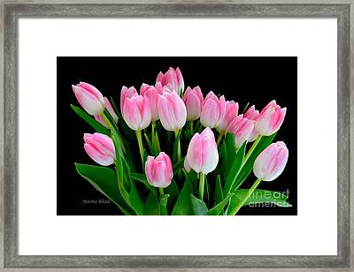 Easter Tulips  Framed Print by Jeannie Rhode