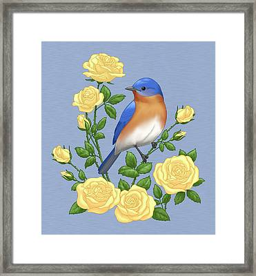 Eastern Bluebird And Yellow Roses Framed Print