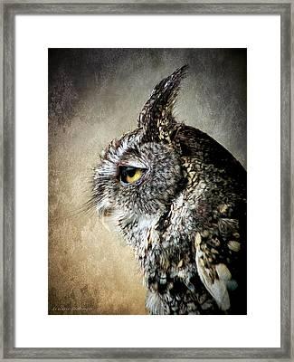 Eastern Gray Morph Screech Owl Profile Framed Print by Melissa Bittinger