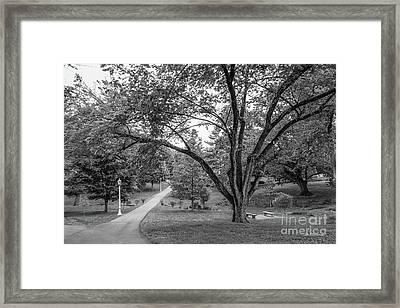 Eastern Kentucky University The Ravine Framed Print by University Icons