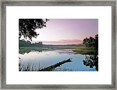 Eastern Morning Framed Print by Phill Doherty