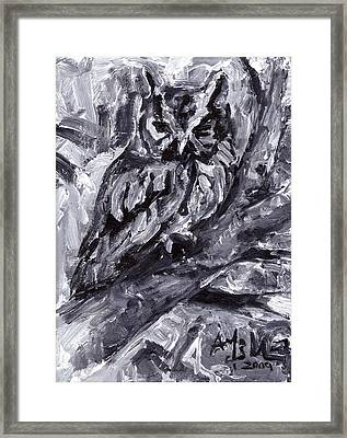 Eastern Screech-owl Framed Print