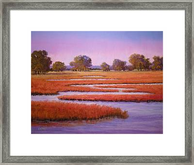 Eastern Shore Marsh Framed Print by Paula Ann Ford