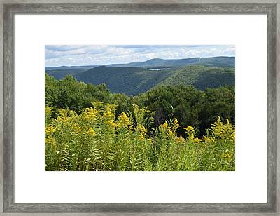 Eastern Summit 4 Framed Print