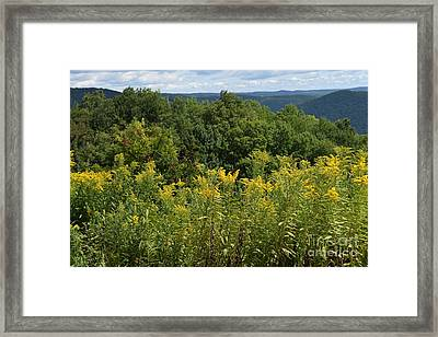 Eastern Summit 5 Framed Print
