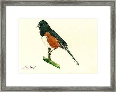 Eastern Towhee Bird Framed Print